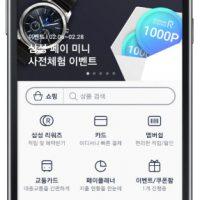 Samsung Pay Mini screen 2