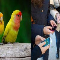 smartphone-e-persone-sempre-insieme