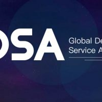 Global Developer Service Alliance